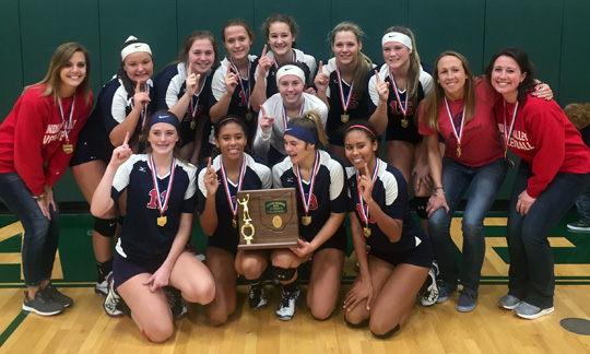 Indian Valley Volleyball - Division II East District Champions