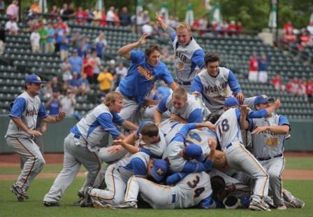 National adult baseball association — pic 13